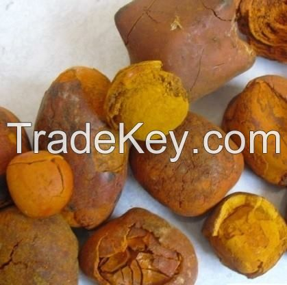 Buy Ox Gallstones, Buy Cattle Gallstones / Cow Gallstones for sale