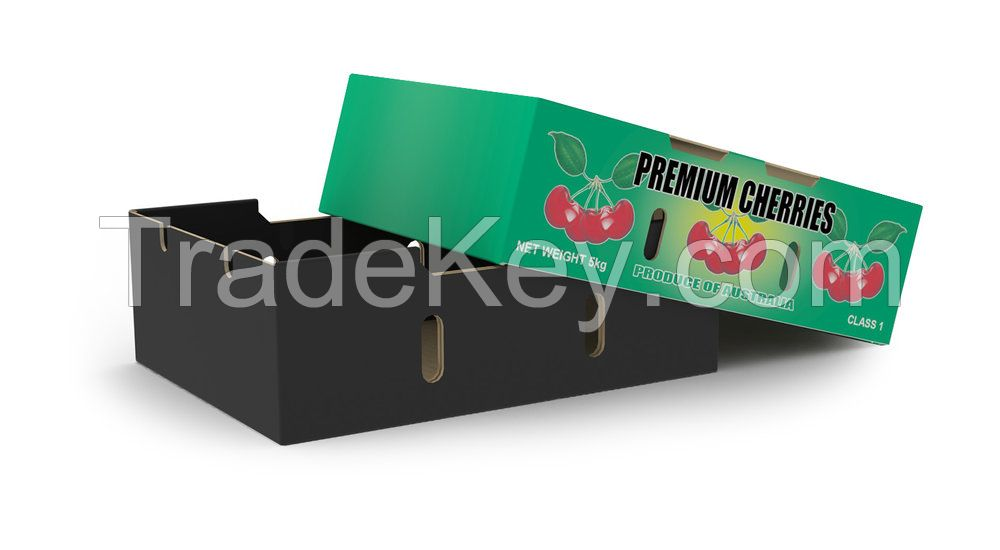 Custom Cardboard Carton Box for Packaging Fruit