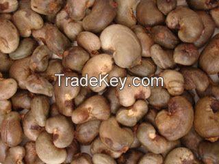 Raw Cashewnut nut in shell dried Tanzania best price