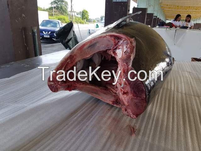 Philippine Tuna