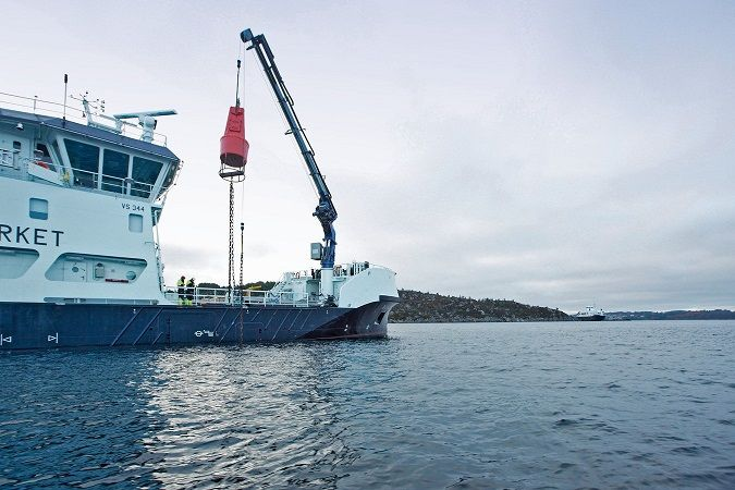 Marine knuckle boom crane for sale