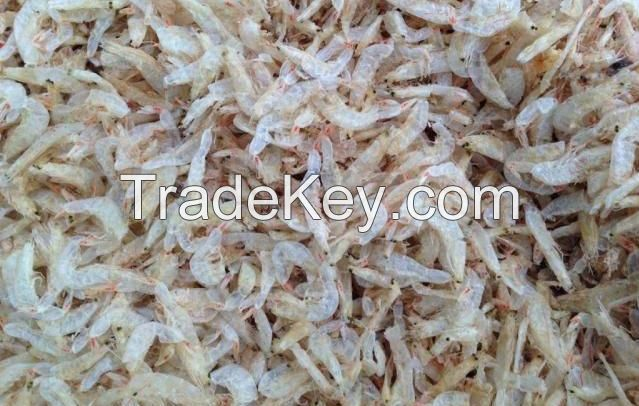Dried Baby Shrimp