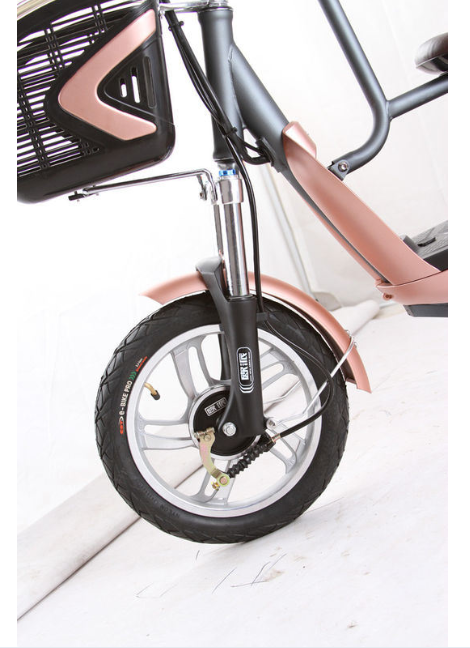Pedal Assist Electric Bike with Child Seat Lead Acid Lithium Battery
