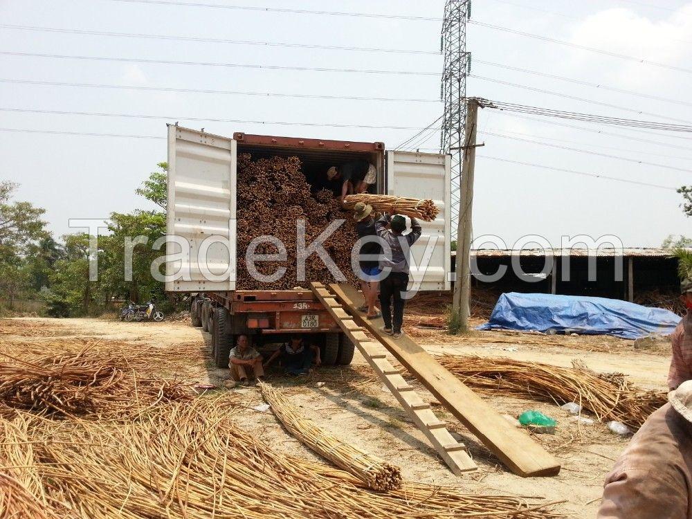 VIETNAM RAW CHEAP RATTAN MATERIAL FOR HANDICRAFTS