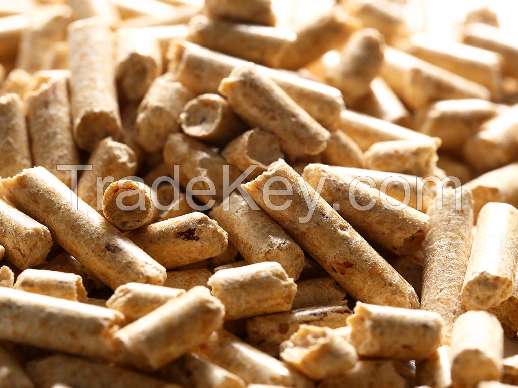 Premium Wood Pellets For Fuel Uses