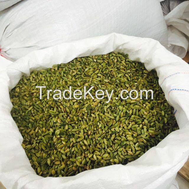 Dried Premium Quality 7-9 mm Green Cardamom