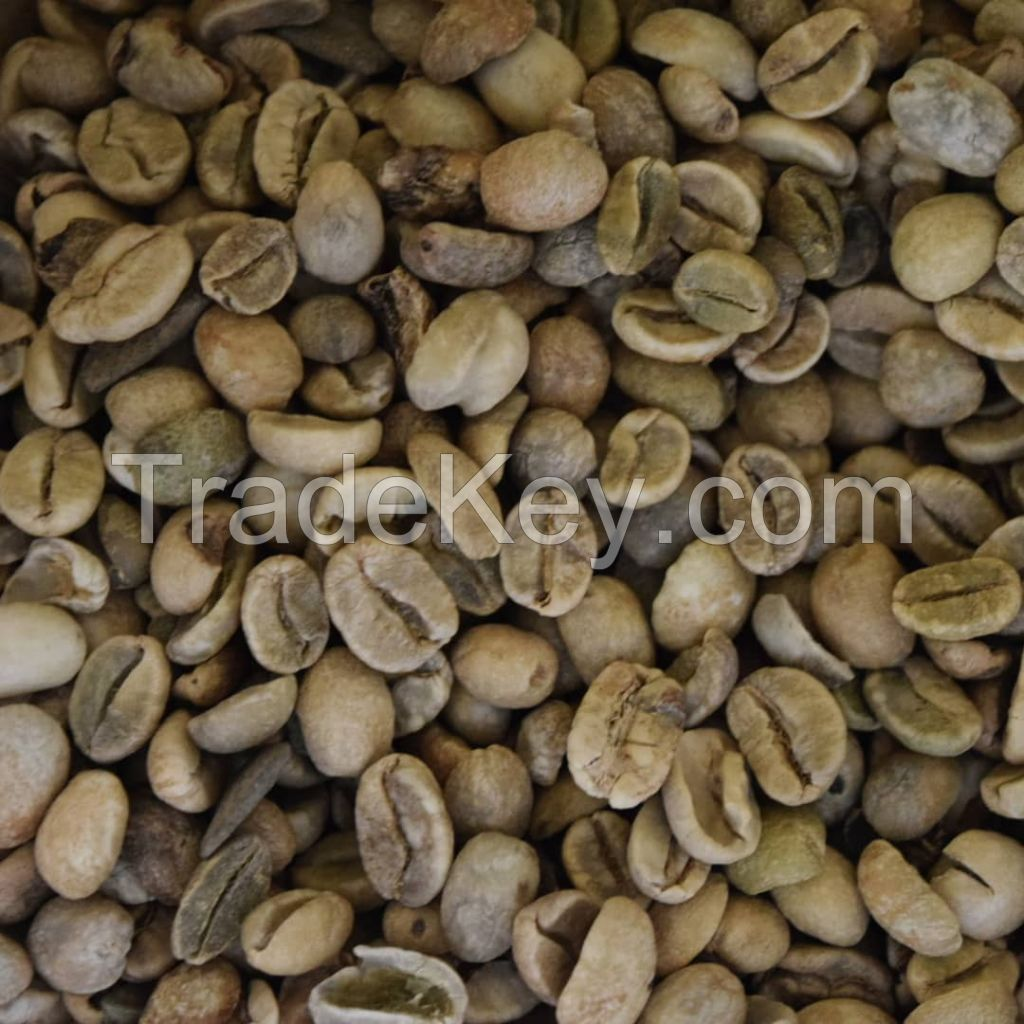 Arabica And Robusta Coffee Beans