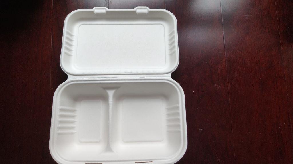 biodegradable food takeout box