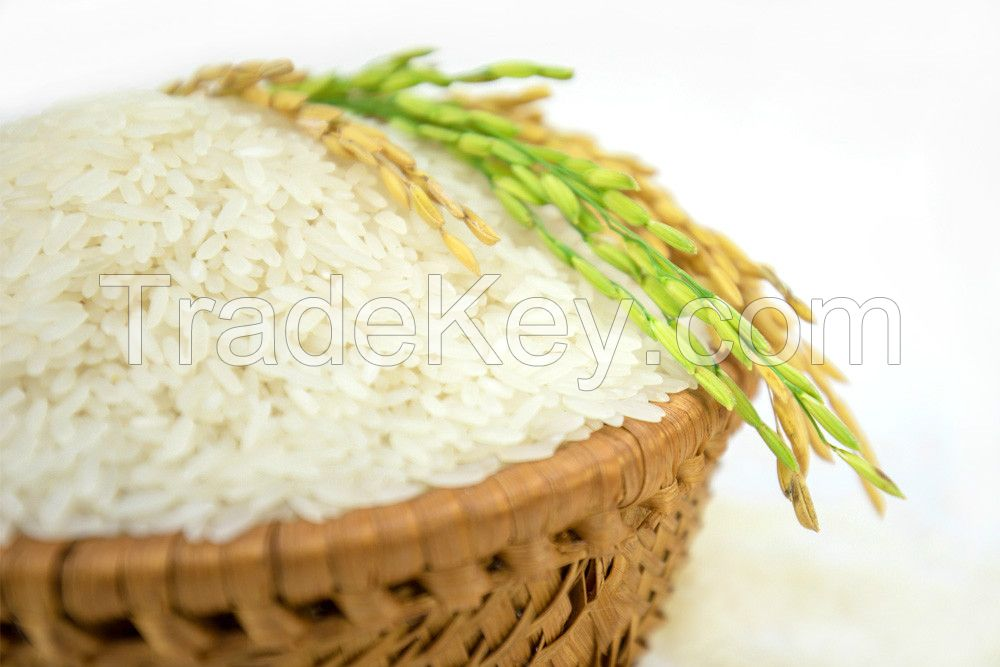 Jasmine Rice From Vietnam With High Quality