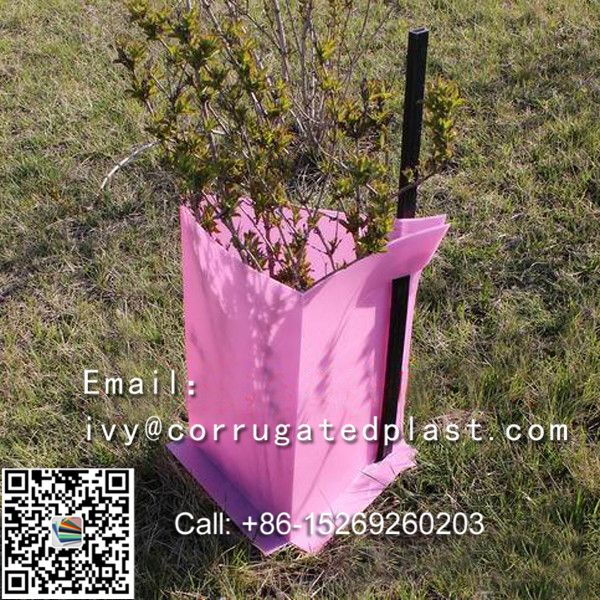 Easy fold, strong and light, Eco-friendly UV protected Corflute Tree Guards