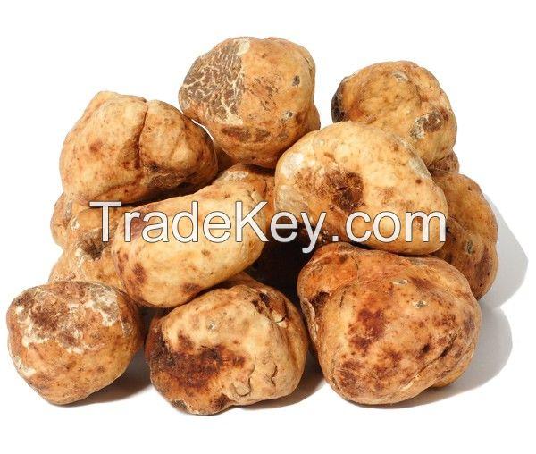 Fresh desert White Truffles