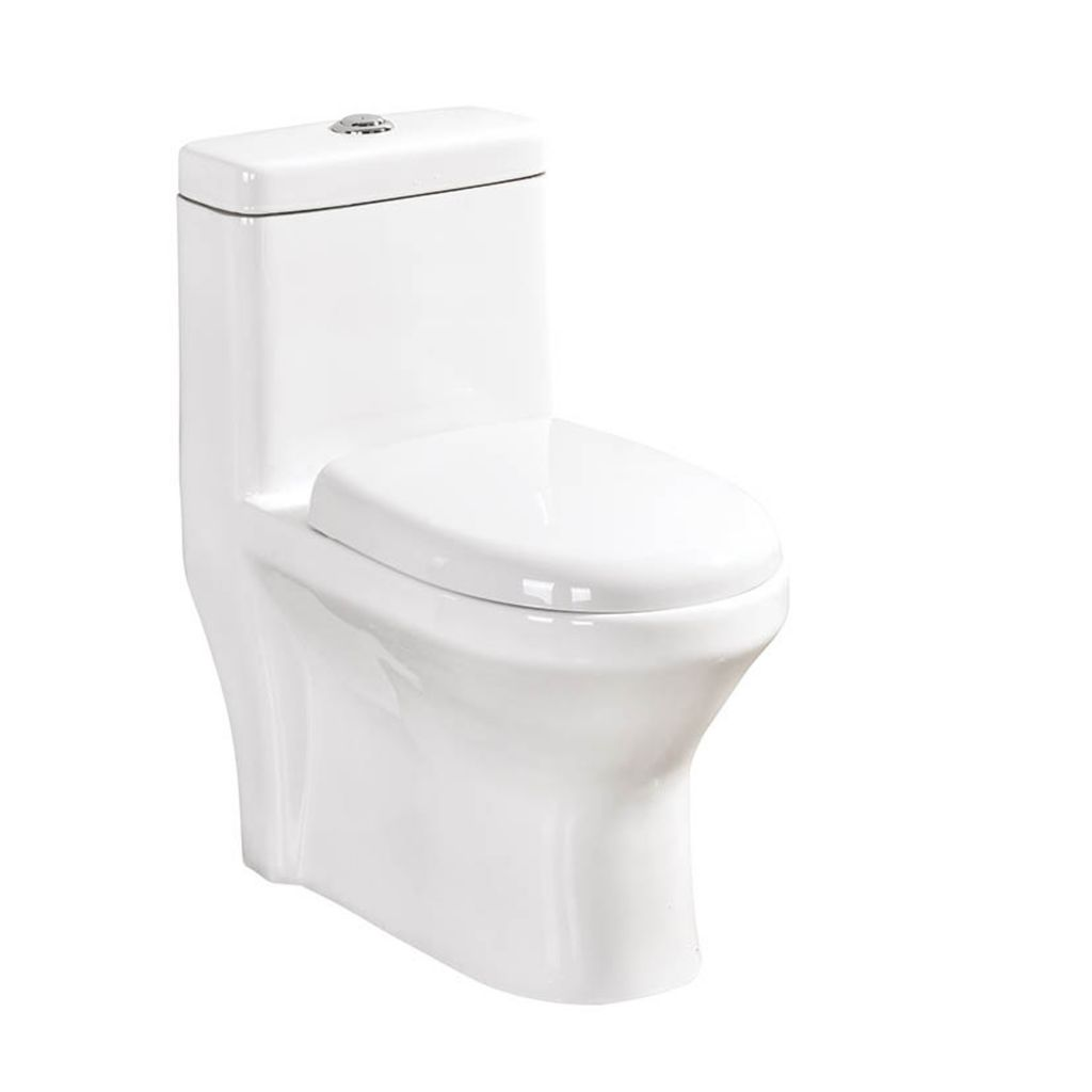 9#Double Hole Cyclone Flushing One Piece Toilet