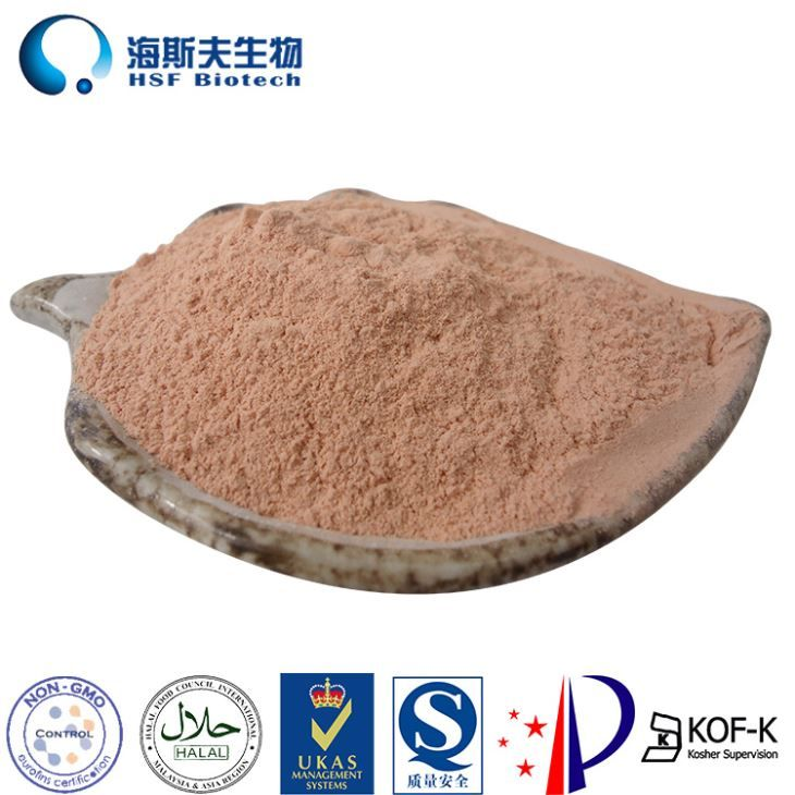 Premium micro-encapsulated mixed tocopherol powder from factory