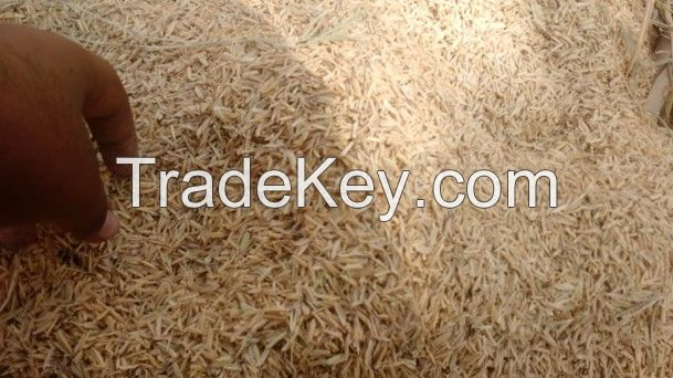 Rice Husk (High grade from Pakistan)