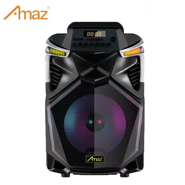 10inch Hot Sale Portable Karaoke Bluetooth Outdoor Trolley Speaker System