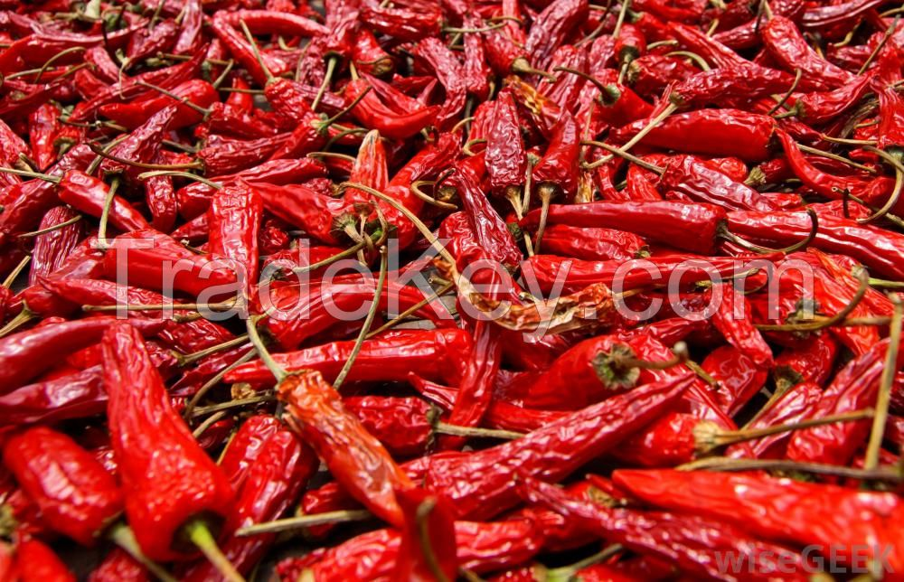 High quality Natural Fresh Red Chili/Pepper