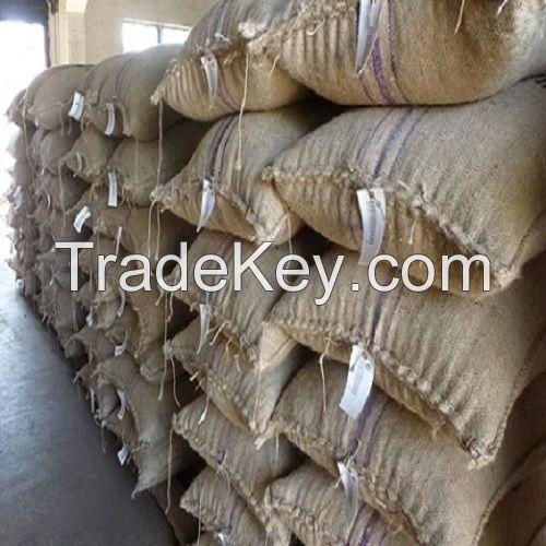 Premium Quality Organic Dried Cocoa Beans