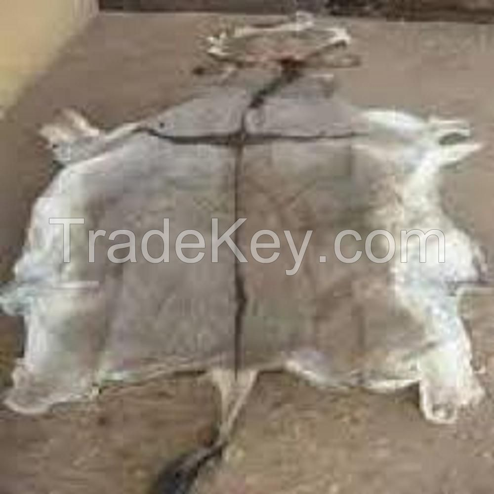 Top Grade salted cow hides Genuine Leather Dry And Wet Salted Donkey/Goat Skin /Wet Salted Cow Hides for sale