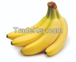 Fresh Banana With Best Quality From Vietnam