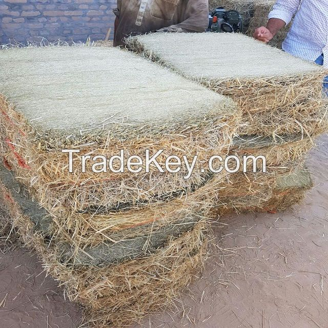 High Quality Animal Feed Alfalfa Hay From Ukraine