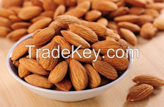 Fist grade Dried Almond Nuts (Sweet and Bitter Almond)