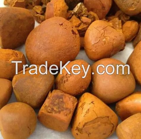 10-25g free sample Supply High Quality Natural Cow Gallstones