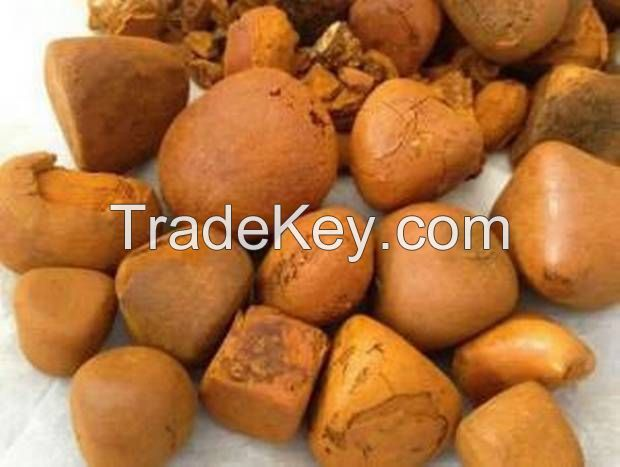 Now Available Grade A Ox cattle Gallstone for sale