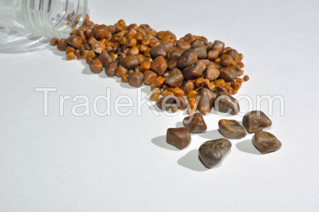 Top Quality Organic Cattle Gallstones