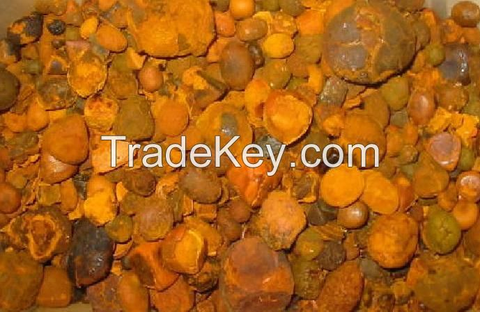 Dried Cow Ox Gallstones