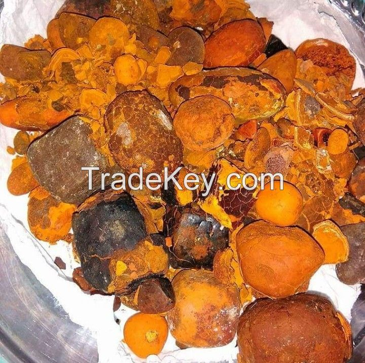 Ox Gallstone (90% Whole Stones / 10% Broken)