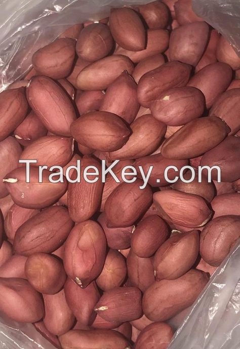 Top Grade Peanuts / Blanched / With Skin / in Shell / 100% Natural