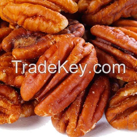 Roasted Pecan Nuts / Salted Pecan Nuts / Raw Pecan Nuts With Shell For Sale