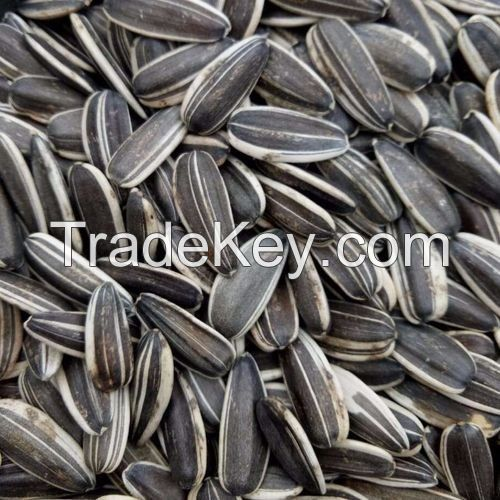 Raw Natural  wholesale sunflower black seeds