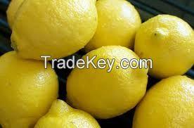 Fresh Eureka Lemons,Yellow lemons,Fresh green Eureka lemon