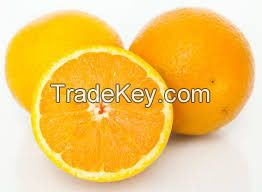 Fresh Seedless Navel and Valencia oranges from South Africa,Juicy oranges