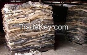 Quality Dry Donkey Hide,Salted Donkey hides,Wet Blue Cow hides and wet salted cow hides available