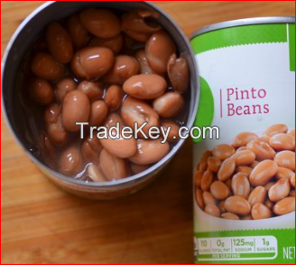 Canned Broad Beans in Canned vegetables Canned Pinto Beans