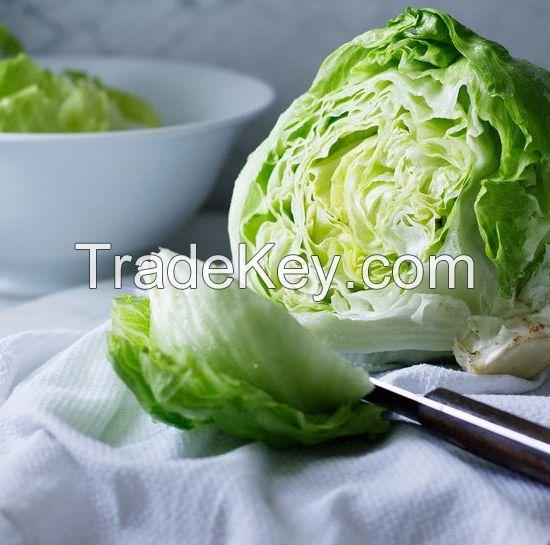 Iceberg Lettuce for sale