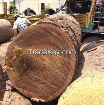 African Hardwood Sawn Timber and Wood Logs for Sale