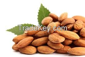 Almond Nuts Best Quality Grade AA