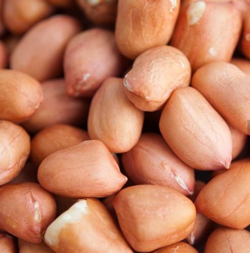 peanut peanut, blanch peanut, red peanut