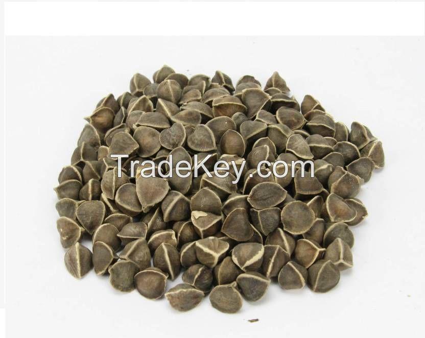 High Quality Moringa Seeds