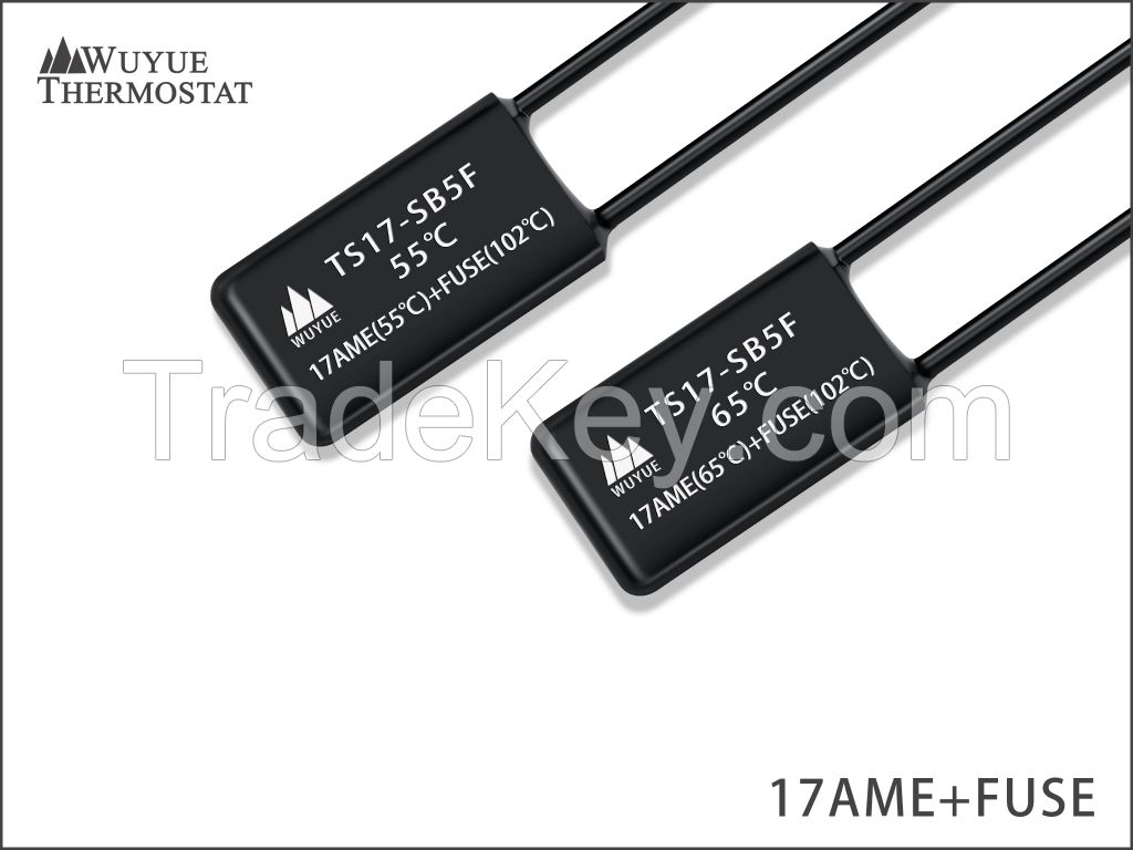 17AME thermal protector both temperature and current sensitive thermostat made in China