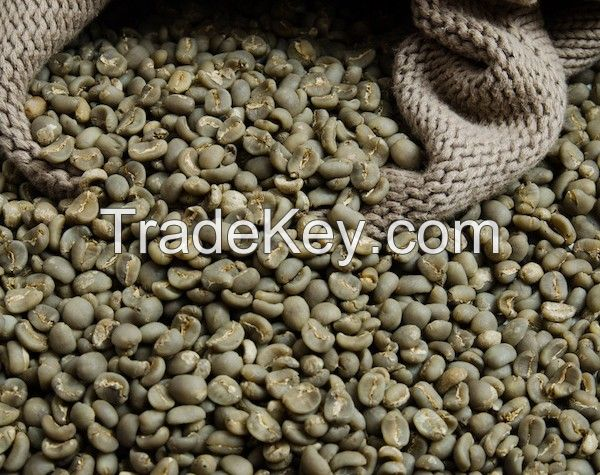 COFFEE BEANS UNWASHED ROBUSTA BULK COFFEE BEANS WITH HIGH QUALITY