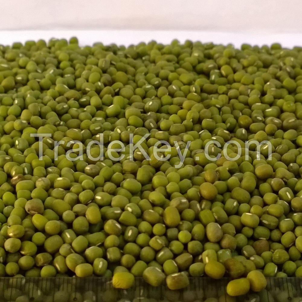 Green Mung Beans / Green Gram /Moong Dal / Vigna Beans (Red Ruby)