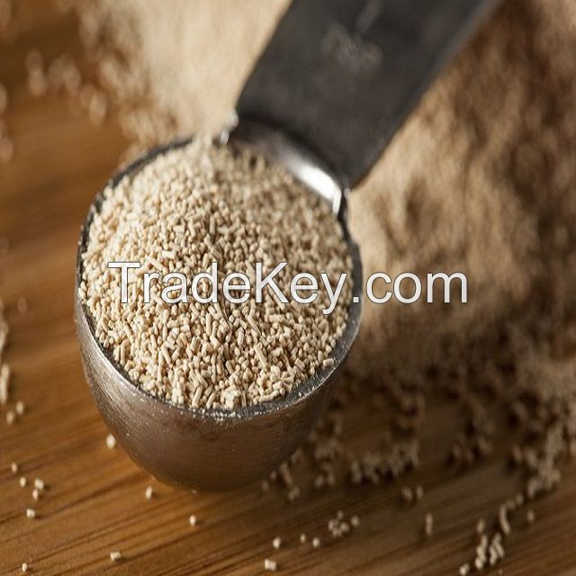 100% INSTANT DRY YEAST MANUFACTURER