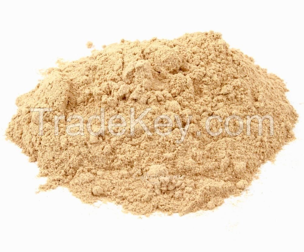 Healthy food additives nutritional yeast