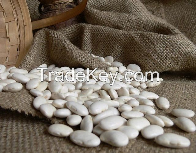 Fresh Quality Kidney White Beans In South Africa