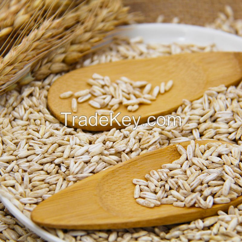 2019 Top products white Oats wholesale