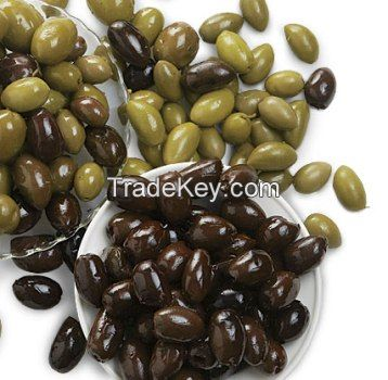 Black and Green Olives / Fresh Black and Green Olives